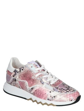 Floris van Bommel 85334 07 Pink